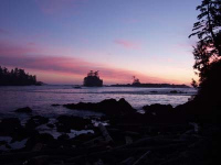 Dramatic Uclulet Oceanfront Beauty