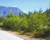 Gold River Industrial Land